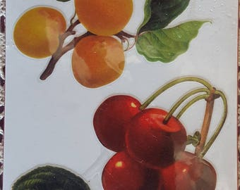 Board 3D cherries and PLUMS decor stickers 20cm