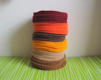 "300 pcs, 3"" Hand cut Felt Circles in Fall Colors"