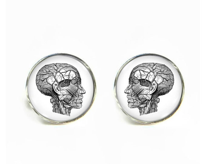 Anatomy Head small post stud earrings Stainless steel hypoallergenic 12mm Anatomical Gifts for her