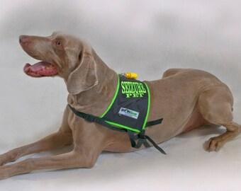 Seizure Dog Safety Vest and Kit , Alert High Visibility