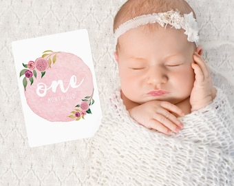 Floral Girls Baby Milestone Cards. Monthly Pack of 13 Cards.
