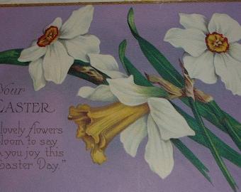 Pretty White Jonquils on Purple Antique Easter Postcard