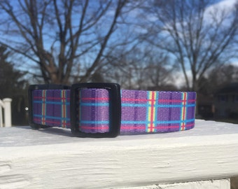 purple plaid dog collar martingale or buckle