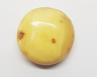 Amber stone20g