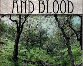 Silver and Blood - fantasy fiction - book