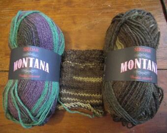 Sirdar Montana - Hidaway (202) - Acrylic and Wool Yarn