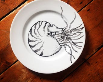 Hand painted nautilus plate