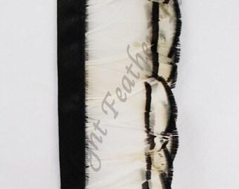 Natural Feather Trim White Pheasant Tippet per yard