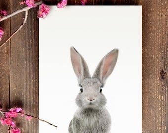 Rabbit print, PRINTABLE art, Animal print, Baby rabbit, Nursery decor, Animal art, Baby animals, Nursery wall art, Bunny print, Kids decor