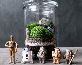 Star Wars Terrarium with R2D2 C3PO or Ewok Collectible Figurine