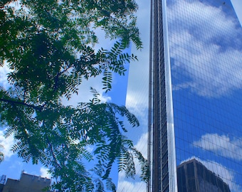 Freedom Tower - New York City-Urban - Reflection of the Clouds with Trees - 8x10 Fine Art Print-Home Decor- Office Decor-Blue Skies-Clouds