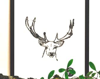 Deer picture, deer, animals motif, forest dwellers