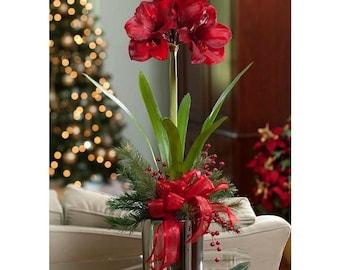 Winter Floral Arrangements Centerpieces - Artificial Red Amaryllis
