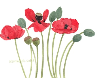 Red Poppy Garden Group Original Watercolor Painting by Wanda's Watercolors
