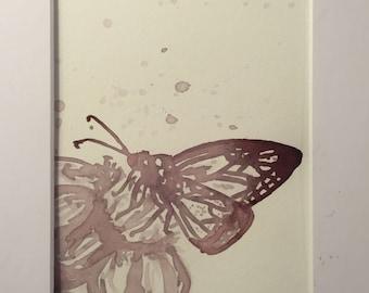 Monarch butterfly in Pinot Noir
