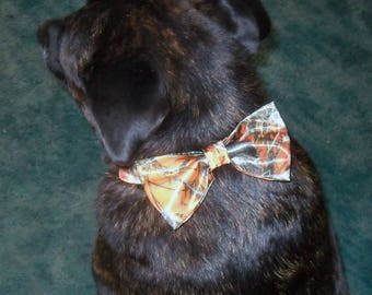 Here is a real Country cutie Dress up your best friend or best man now.Please note dogs neck measurements. 22 camo colors to choose from.