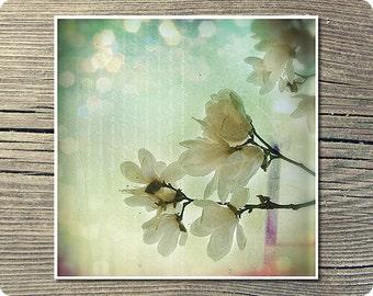 Flower Art Print Dreaming  5x5 Inch Print