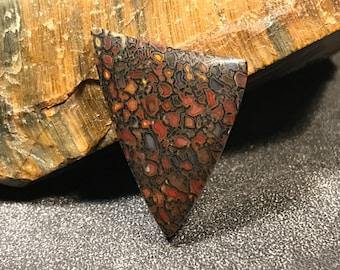 Petrified Dinosaur Bone Cabochon