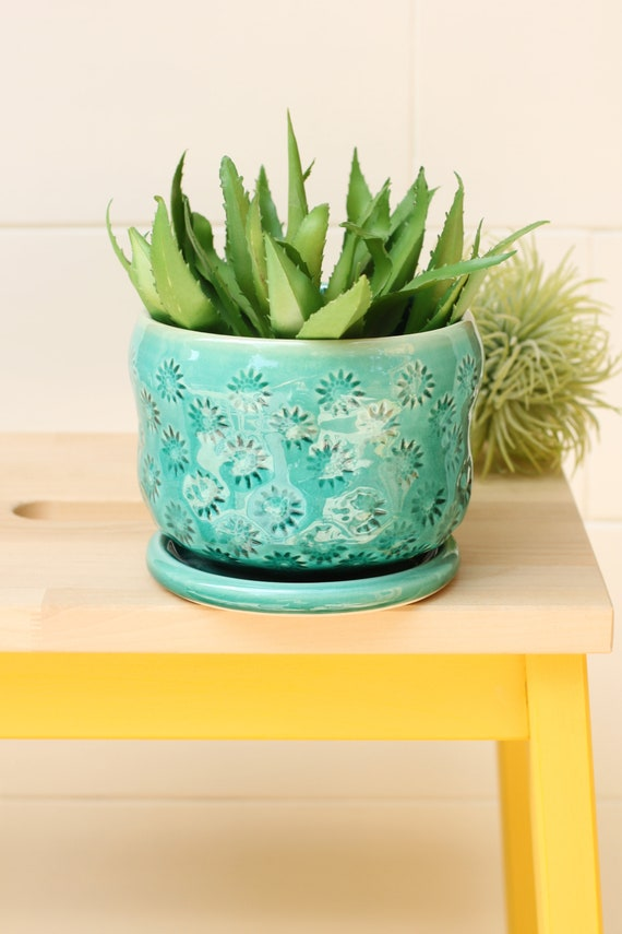 coastal planter // cactus planter // succulent pot // ceramic pot // flower pot