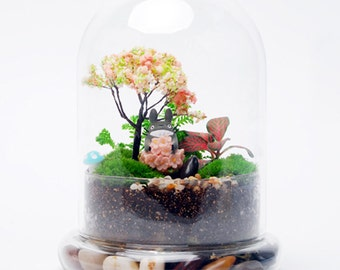 Glass air plant terrarium container wedding decoration