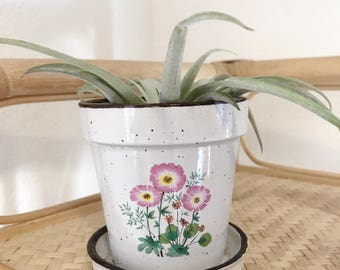 Small ceramic planter with drainage hole / floral made in japan planter pot