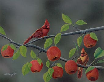 Symphony in Red, cardinals on an apple tree