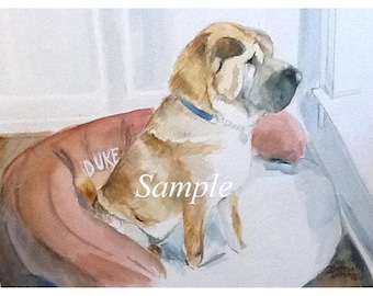 Watercolor Portraits of Pets