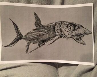 Bonefish Drawing Print