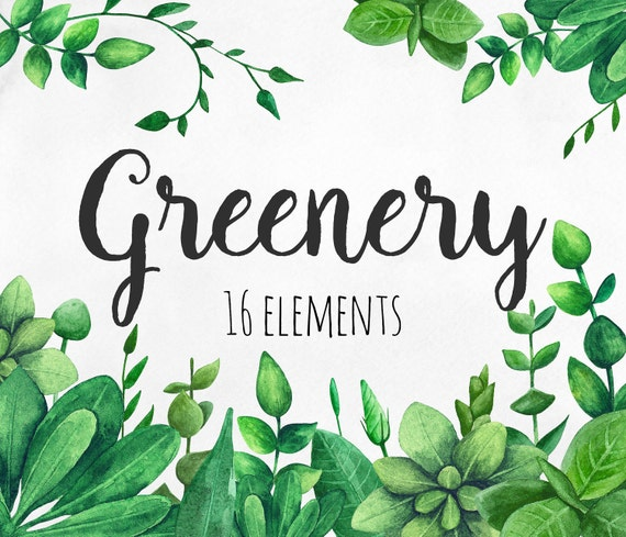Greenery Clip Art Green Watercolor Garden Clipart Summer