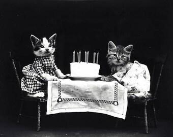 Happy birthday cats greeting card. DIGITAL DOWNLOAD Ephemera. Cat Instant download. Cats Birthday card. Cat Gift Card. Digital birthday card