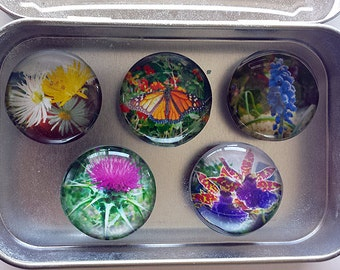 Handmade Glass Marble Magnets - original photographs of Flowers & Butterfly