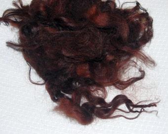 Karakul Sheep Wool Locks for Spinning Felting and Doll Hair, Doll Wig, Hand Dyed shades of Auburn Brown 1 oz.