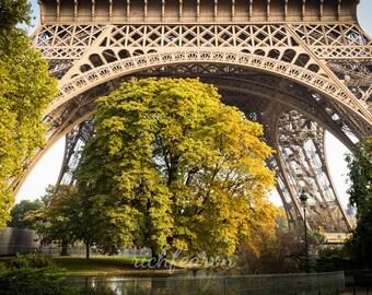 Instant Digital Download. Tree under Eiffel Tower / Tour Eiffel Paris 2018. Fine Art Photograph Paris Colour Photo Wall Art Jpeg