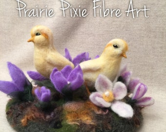 Spring Chicks & Prairie Crocus