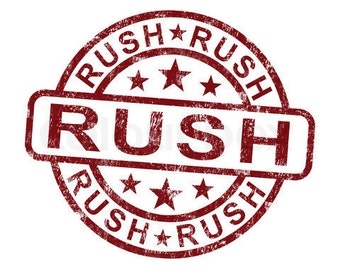 Rush delivery Express Priority USPS Shipping Option