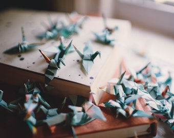 25 - Handmade Origami Paper Cranes in Rifle Paper Co. Shanghai Garden Floral Print