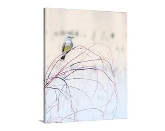 Kingbird Picture, Bird Art Print, Pastel Bird Art, Gift for Bird Lovers, Bird Photography, Minimalist Art, Vertical Bird Print, Birder Gift