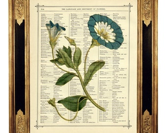 Flowers Art Print Botany Picture Flower Engraving - Vintage Victorian Book Page Art Print Steampunk Dictionary Wall Art Literary