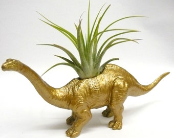 Gold Apatosaurus Dinosaur Planter with Air Plant // Coworker Gift // For Her // For Him / stocking stuffer / secret santa