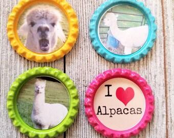 Alpaca magnet set