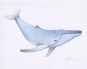 Mini Whale. Original