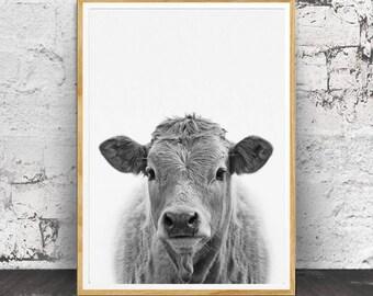 Cow Print, Nursery Animals, Nursery Animal Print, Nursery Print, Cow Wall Art, Nursery Wall Art, Nursery Decor, Nursery Printable, Farm Cow