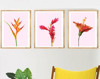 Tropical Flowers Set of 3