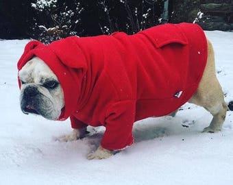 Snorf Industries: Original BatHat Hoodie for English Bulldogs. Keep Adorable Ears Cute & Warm!