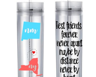 Best Friends Sisters Long Distance State Skinny Tumbler