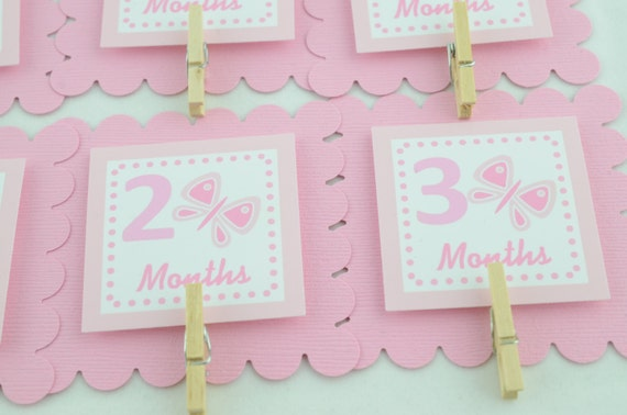 Butterfly 12 Month Banner First Year Photo Banner Monthly