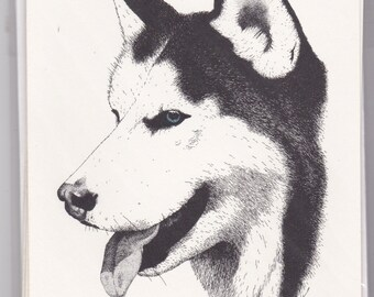 Siberian Husky Note Cards With Blue Eyes