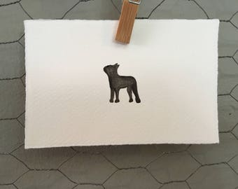 Boston Terrier Watercolour Art Card