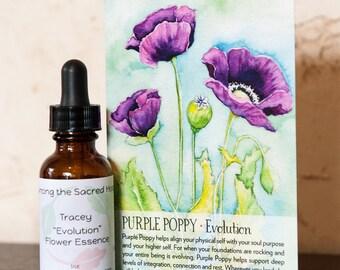 3 Month Flower Essence Subscription