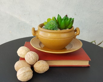 Upcycled Vintage stoneware Dish Planter With Drainage Hole and Saucer